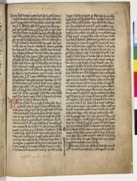 AM 45 fol, 119r (d323dpi)