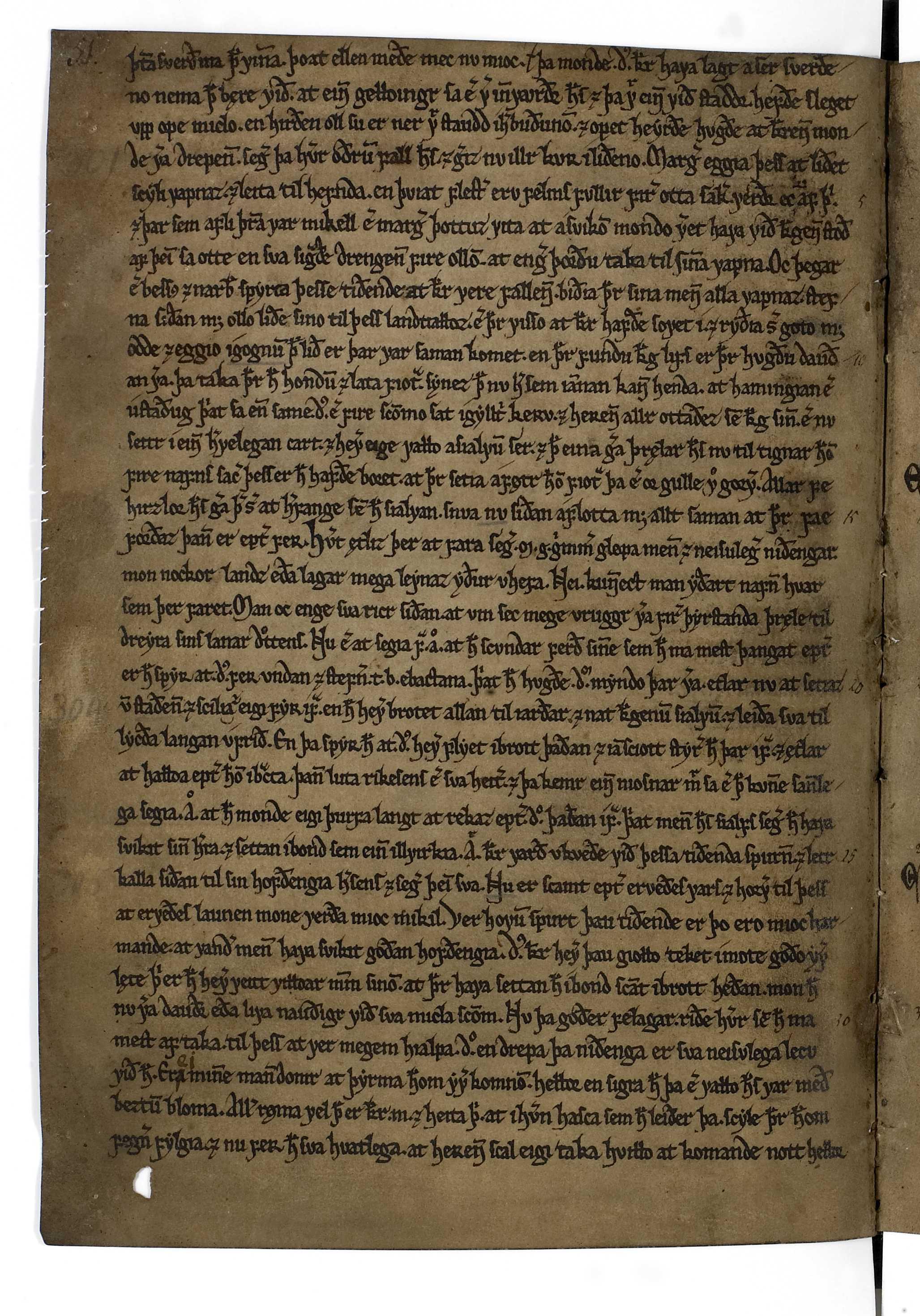 AM 519 a 4° - 24v